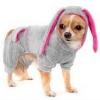 Где продается самая новая одежда для собак