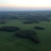 Стать «санитаром» леса в Омской области может любой желающий