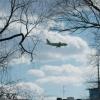 Жизнь пассажирки рейса Омск-Москва спасли экстренной посадкой в Тюмени