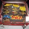 Под Омском уничтожили 250 кг польских яблок