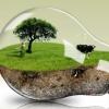 В Омске пройдет научно-практическая конференция по экологии