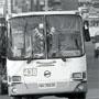 Общественный транспорт и социальная поддержка населения