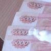 В Омской области продавец причинила хозяйке магазина ущерб более чем на 390 тысяч рублей