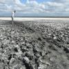 Омичи почистят берег лечебного озера
