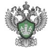 Главный претендент на пост главы омского Росприроднадзора - Сергей Маевский