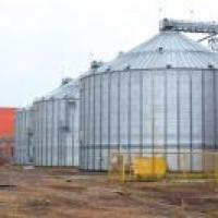 В Омской области спустя семь лет начал работать завод по переработке масличных культур