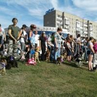 В Омске победительницей парада пород стала 3-летняя Руслана