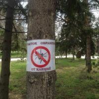 Компания «Дез-Гарант» обработает омские парки от клещей в два раза дешевле