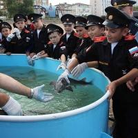 Омские кадеты помогли выпустить в Иртыш молодых краснокнижных осетров