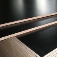 Влагостойкая фанера ФСФ – особенности и характеристики материала