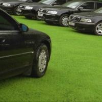 Омские депутаты разбираются с зимними парковками на газонах