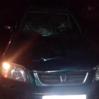На омской трассе сбили пешехода, который шел по середине дороги