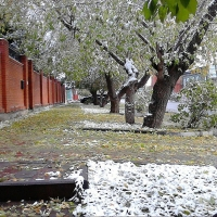 Рабочая неделя в Омске начнется с похолодания