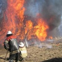 Омичам напомнили о правилах пожарной безопасности на дачах