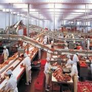 В регионе создадут сеть мини-заводов по мясопереработке