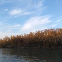 Октябрьская погода в Омской области стала рекордной за последние 100 лет