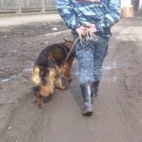 В Омске наркоман грозился взорвать жилой дом