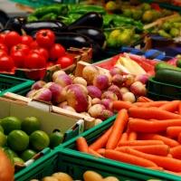 Омичей поддержат в заготовке и переработке ягод, грибов и овощей