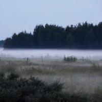 В Омскую область приходит осенняя дождливая погода