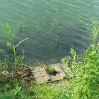В Омске зафиксировали экстремальное загрязнение воды