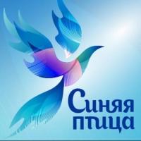 Юные омичи смогут впервые поучаствовать в конкурсе талантов «Синяя птица»