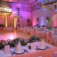 Организация свадеб и праздников: что могут профессионалы
