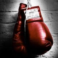 В Омске пройдет Кубок губернатора по боксу