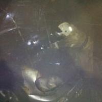 В Омске сгорели иномарка и водитель
