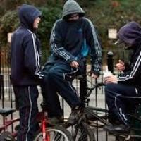 В Омском районе подростки в капюшонах вырвали у девушки телефон