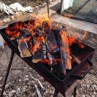 Омичам запрещают жарить шашлыки на открытом огне