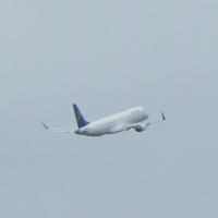 Осенью из Омска запустят чартерный рейс на Гоа