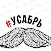 Болельщиков омского «Авангарда» призывают целый месяц отращивать усы