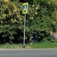В Омске появился дорожный знак в кустах на 6-й Линии