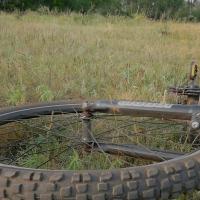 В Омской области разыскивают мотоциклиста, сбившего девочку-велосипедистку