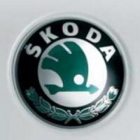 Автомобильные запчасти Skoda и их особенности
