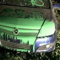 В Омске зеленой краской залили две иномарки