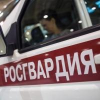 Всего за час Росгвардия нашла пропавших семилетних девочек в Омске