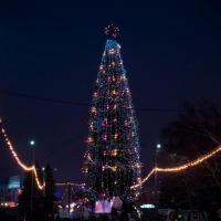 Подсветка елки в Парке 30-летия ВЛКСМ обойдется в 200 тысяч рублей