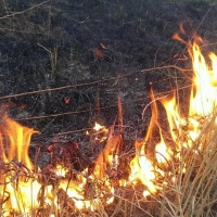 В Омской области чуть не спалили роддом