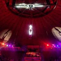 На цирковом представлении в Казахстане сорвалась омская акробатка