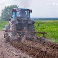 В Омской области поддержат сельхозпроизводителей, пострадавших от паводка