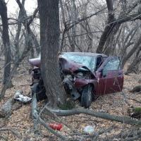 По дороге в поселок Омский мужчина на машине врезался в дерево