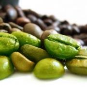 Зеленый кофе: свойства и применение