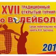 Омичи сыграют в волейбол на турнире памяти Багнюка