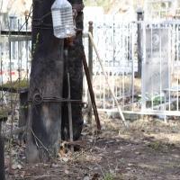 Прокуратура заставляет глав сельских поселений Омской области обработать кладбища от клещей