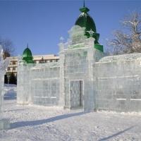 """Омское """"Беловодье"""" выросло из Древа Жизни"""