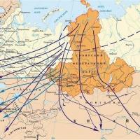 Над Омской областью пролетает 70% птиц, мигрирующих через СФО