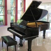 В Омске ДШИ №12 получила в подарок рояль «August Förster» почти за полмиллиона