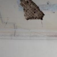 В омской гимназии штукатурка травмировала десятиклассницу