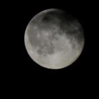 Две ночи омичи смогут наблюдать метеоритный дождь